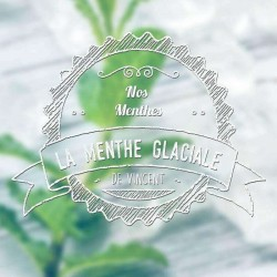 Menthe Glaciale - VDLV Vincent 5,90€