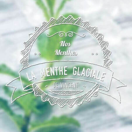 Gamme Classique - AROME REVOLUTE ABRICOT
